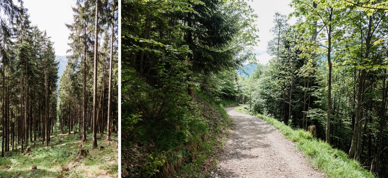 Hennenkopf Wandern Oberammergau
