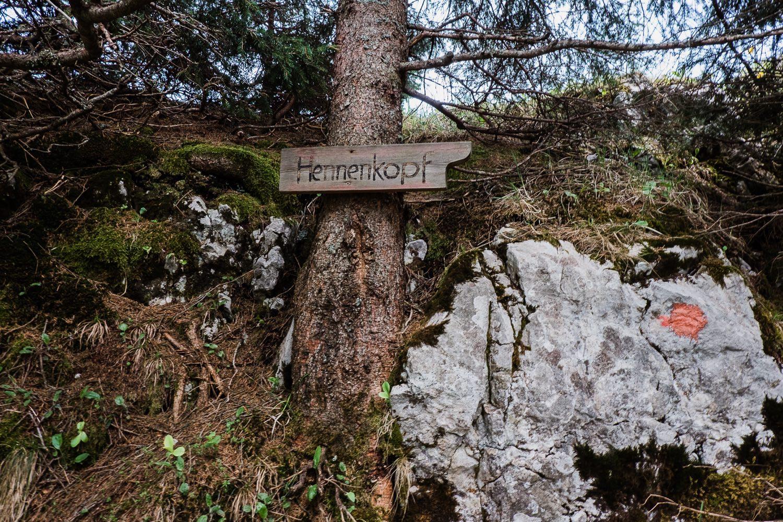 Ammergauer Alpen Hennenkopf