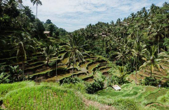 Reiseroute für Bali